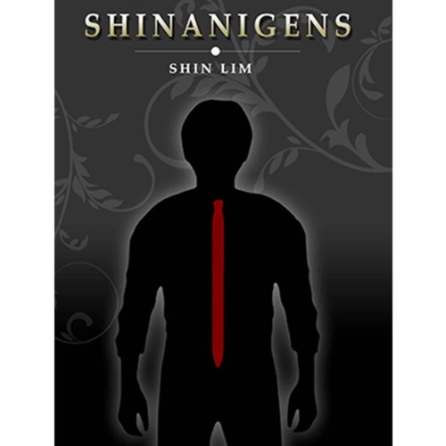 신나니겐스(Shinanigens by Shin Lim)